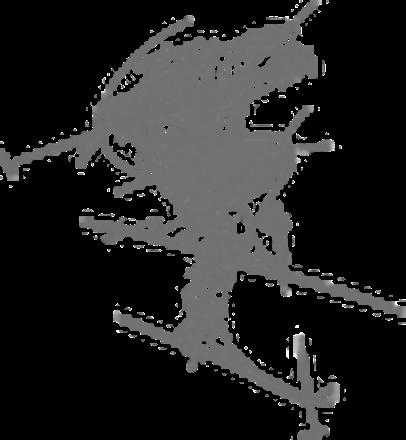 Logo Pierra Menta